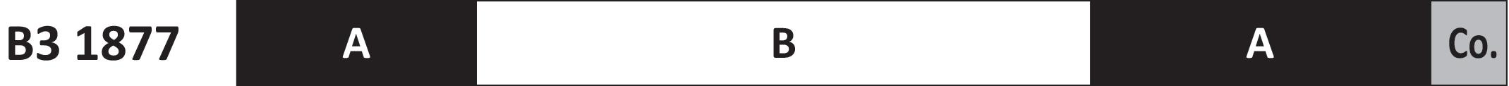 Bruckner Brand Part 2 - Anton Bruckner Third Symphony 1877