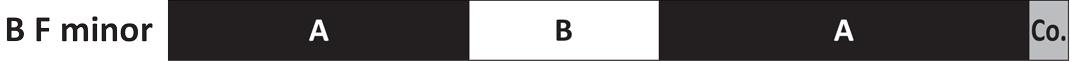 Bruckner Brand Part 2 - Anton Bruckner F Minor